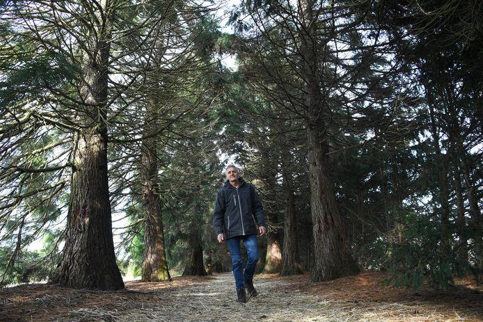Jan Mouws in het bomenlaantje. Hier worden mensen uitgenodigd om kracht te tanken uit de natuur.
