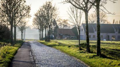 Beschermde kasseiweg Vladslostraat - ruim 150 jaar oud - wordt onder handen genomen