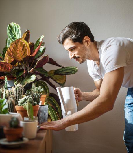 3 applications pour prendre soin de ses plantes