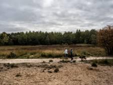 Velpse en Rozendaalse bossen worden voorbereid op klimaatverandering
