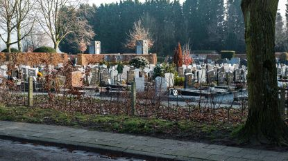 """Problemen met haag rond kerkhof houden aan: """"Geen enkele discretie voor bezoekers"""""""