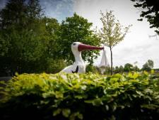 Een boom voor elke baby in Bronckhorst: 'Verbondenheid met geboortegrond'