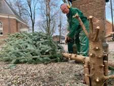 Kerstboom aftuigen? Geuf Middelkoop pakt lekker de kettingzaag!
