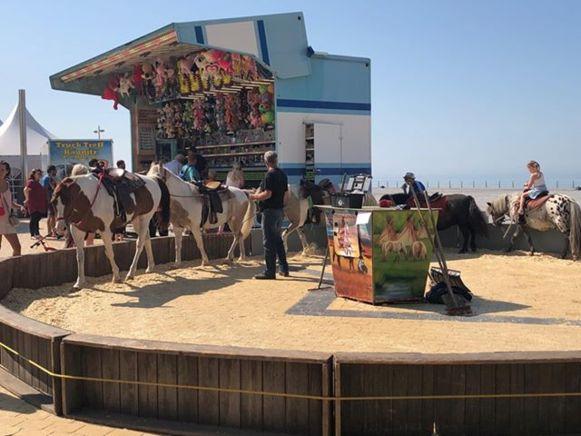 De Werkgroep Dierenwelzijn van Middelkerke vindt het niet kunnen dat de paarden en pony's het hele weekend in de blakende hitte moesten lopen.