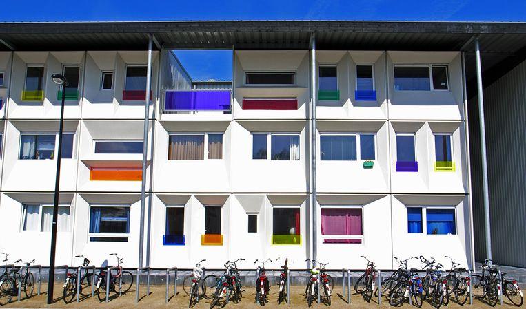 Studentenwoningen in de Houthavens in het Westelijk havengebied in Amsterdam. Beeld ANP