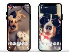 Ook honden krijgen nu eigen filters op Snapchat