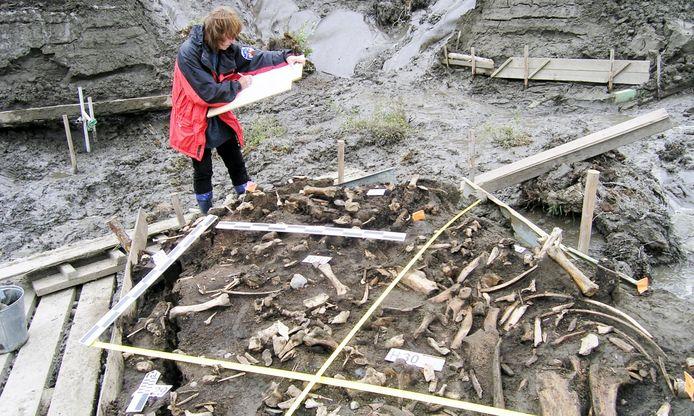 De archeologische site in het noordoosten van Siberië, waar de melktanden werden teruggevonden.