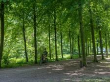 Voortuinen doen ook mee in bomenvervangingsplan Laarbeek