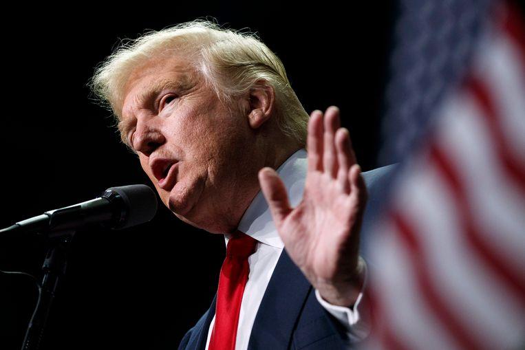 Verkozen Amerikaans president Donald Trump. Beeld AP