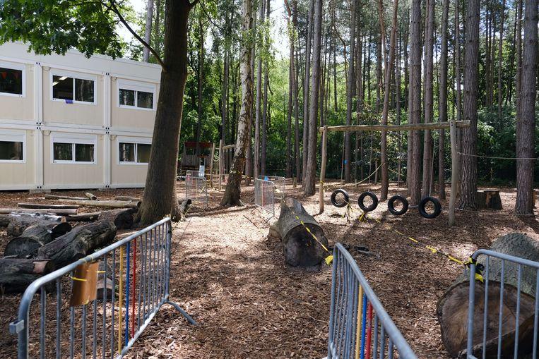De veertig bomen zouden gekapt worden als het tot een uitbreiding van de school komt.