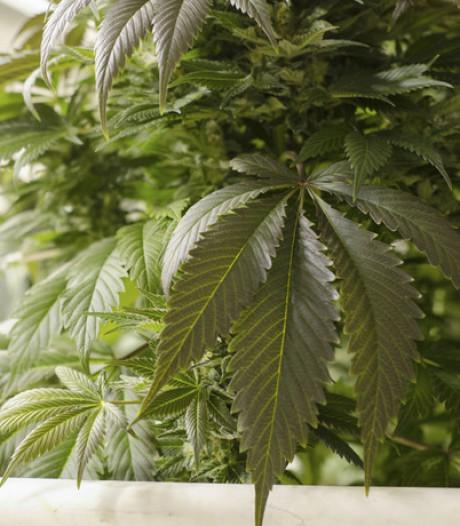 Drugs en cash gevonden na achtervolging in Bergen op Zoom, man (27) aangehouden