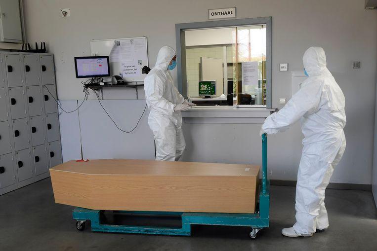 In beschermende kleding brengen medewerkers iemand die door Covid is overleden binnen bij het Antwerpse Pontes crematorium. Beeld Photo News