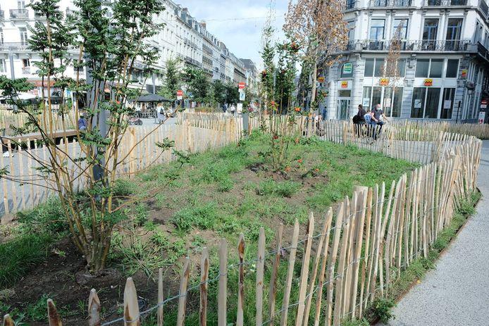 Groen parkje op het Fontainasplein in de Brusselse binnenstad.
