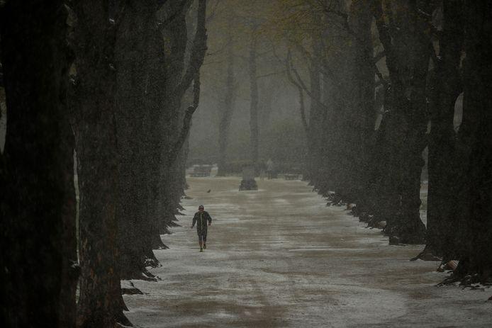 Le parc du Cinquantenaire à Bruxelles, ce mardi.