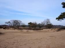 Provinciebestuur blijft betrokken bij Goois Natuurreservaat ondanks stap terug
