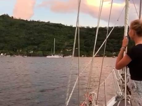 Zeezeilen met Zouterik #6: naar honeymooneiland Bora Bora