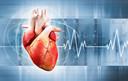Met behulp van ademhalingsoefeningen krijg je je hartslag onder controle en word je rustiger.