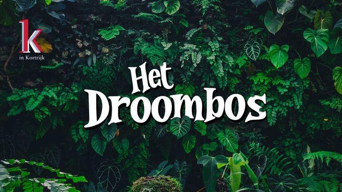 K in Kortrijk opent een Droombos