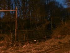 Treinverkeer bij Steenwijk twee uur plat na boom op het spoor