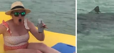 Trois femmes encerclées par 7 requins sur un radeau en mousse