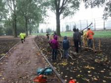 Nieuw Peulenpark krijgt vorm: 'Het wordt prachtig'