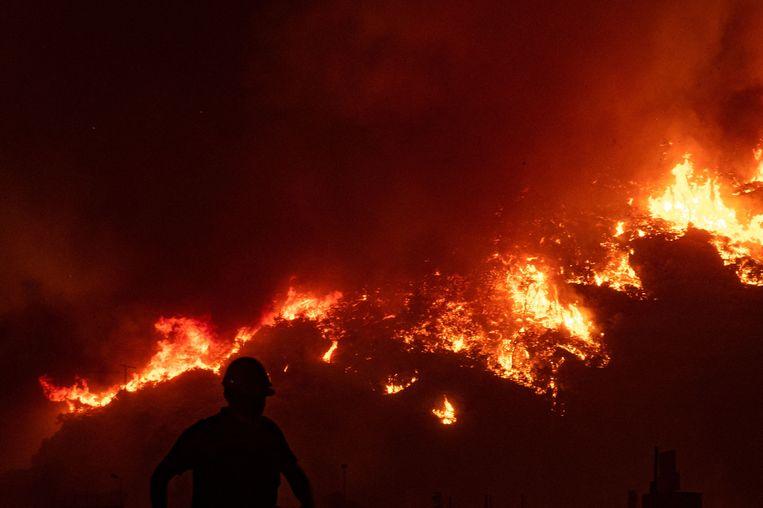 Een brandweerman loopt langs de bosbrand die inmiddels de elektriciteitscentrale heeft bereikt. Beeld AFP