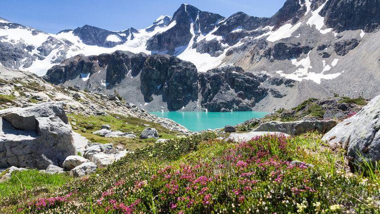 Whistler in Canada, het grootste skigebied van Noord-Amerika. Beeld Thinkstock