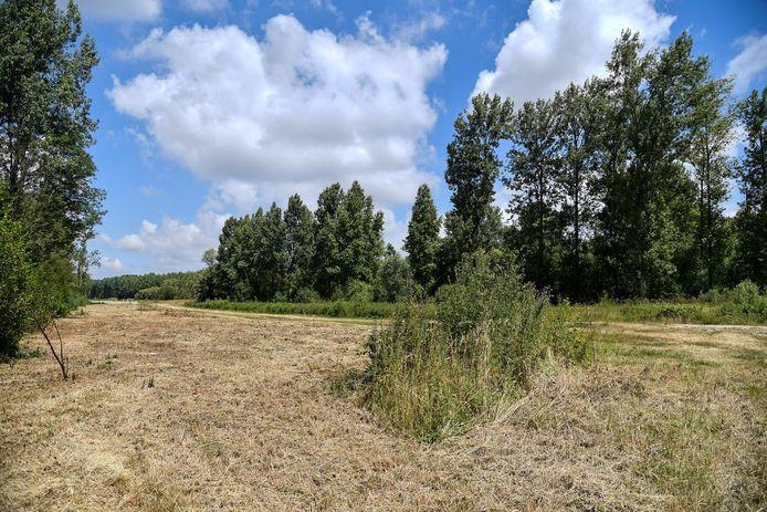 Het natuurgebied is maar liefst 240 hectare groot.