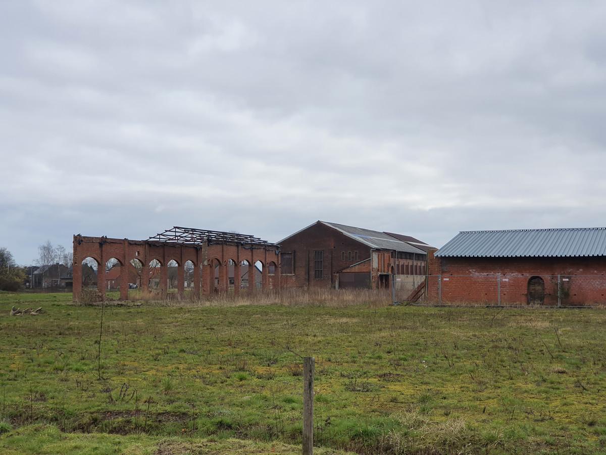 De oude site van Steenbakkerij SAS in Sint-Jozef Rijkevorsel verandert in een woongebied met een parkzone en een site waarbij het industrieel erfgoed blijvend herinnerd zal worden. Aan de arcadebogen zou bijvoorbeeld een multifunctionele ruimte kunnen komen.