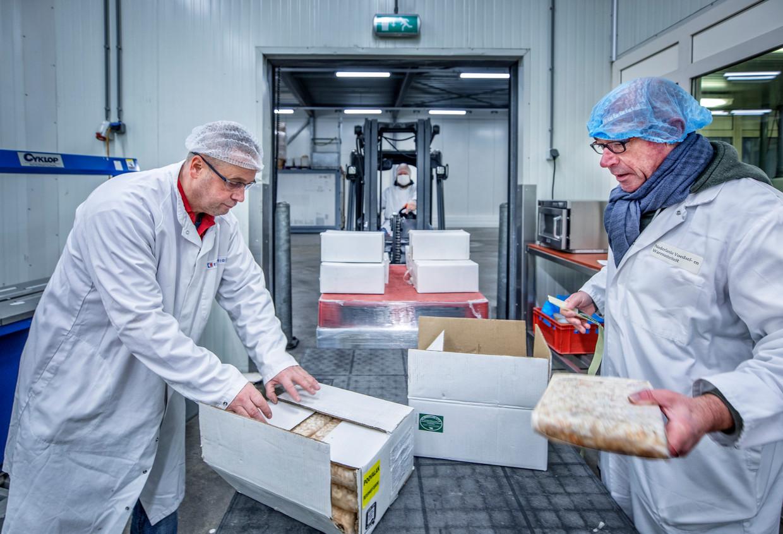 Controle van een lading garnalen die van buiten de Europese Unie het land binnen komen door Hans de Hamer in Rotterdam.  Beeld Raymond Rutting / de Volkskrant