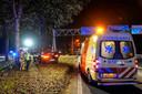 Auto ramt boom op A59.