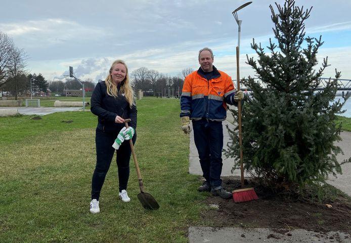 Michelle Witte, wijkcoördinator van de gemeente Terneuzen plantte de kerstboompjes met hulp van Michel de Ridder, groenuitvoerder van de gemeente.