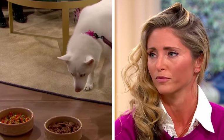 De vrouw keek sprakeloos toe hoe haar hond op de bakjes met eten toestapte.