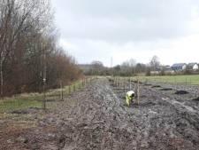 Des vergers sont plantés sur trois parcs d'activité économiques dans la région de Charleroi