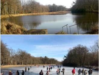 Wat een verschil: vorige week nog volop schaatsplezier op grootste vijver van Herenthout