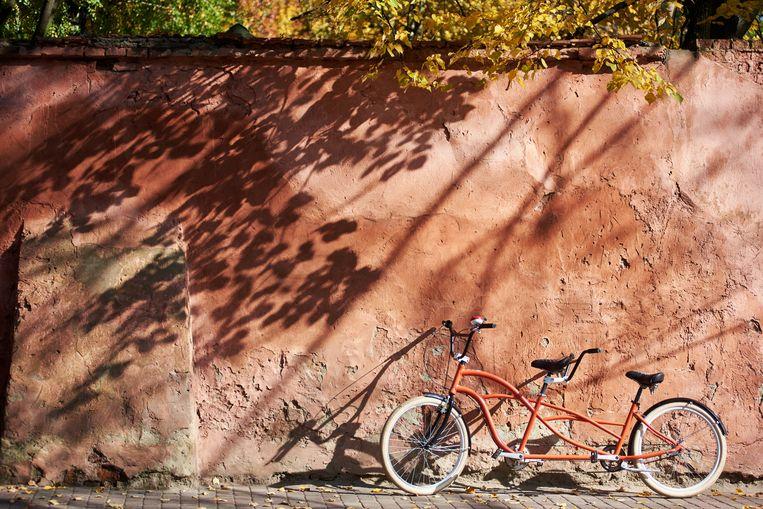 Tandem Beeld Shutterstock