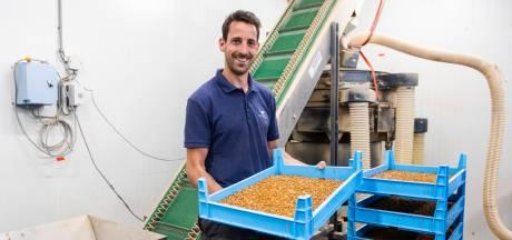 Huisvliegen of meelwormen in chocolade, mueslirepen of pasta? Als het aan Rowin ligt wél