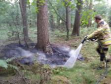 Bosbrand in Heino wordt voorkomen