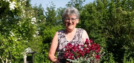 'Op tuingebied is zoveel mogelijk, maar begin met een plan'