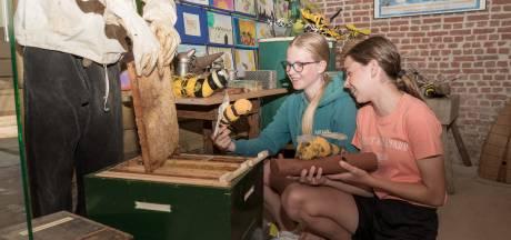 Bijen rotbeesten? Zeker niet, vertellen ze bij Goemanszorg: 'Dat kleine beestje zorgt voor leven'