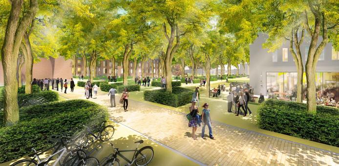 Het terrein van de campus moet groen en open worden.