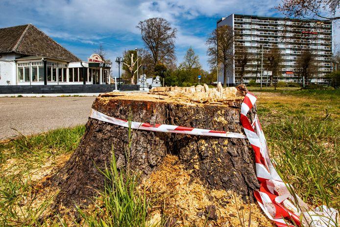 Er is onvrede over de kap van een kastanje bij restaurant De Zomertuin, aan de Zwolseweg. Volgens de Deventer Bomenstichting is de boom te vroeg gekapt: de boom is geveld in de bezwaarperiode.