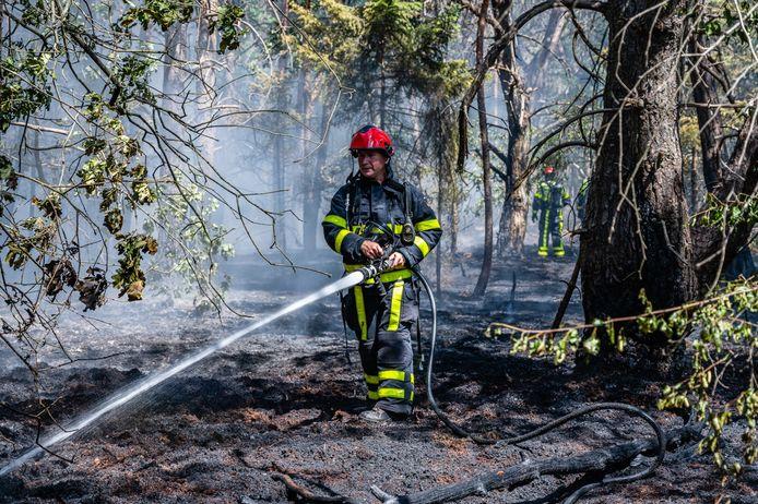 Nabij de Reeshofweg in Tilburg woedde zaterdag een natuurbrand.