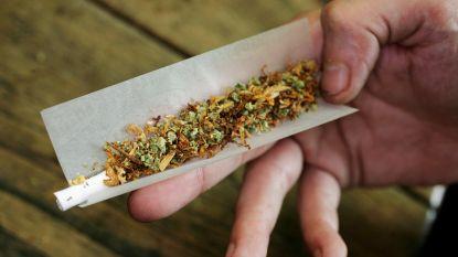 Na klachten van inwoners en bezoekers: Den Haag verbiedt roken van cannabis in stadscentrum