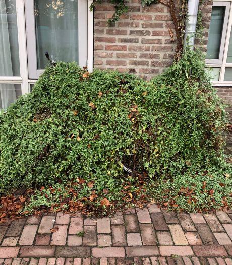 Straatbeeld: Wie is zijn strui... fiets kwijt?