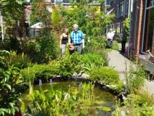 Jeannette ziet wat een met liefde aangelegde tuin voor een mens kan doen: 'Het verhoogt de levenskwaliteit'