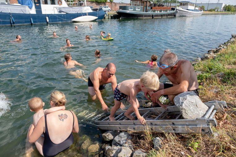 PVDA organiseerde deze Big Jump om de ondertekenaars van de petitie voor het behoud van het stedelijk zwembad een hart onder de riem te steken.