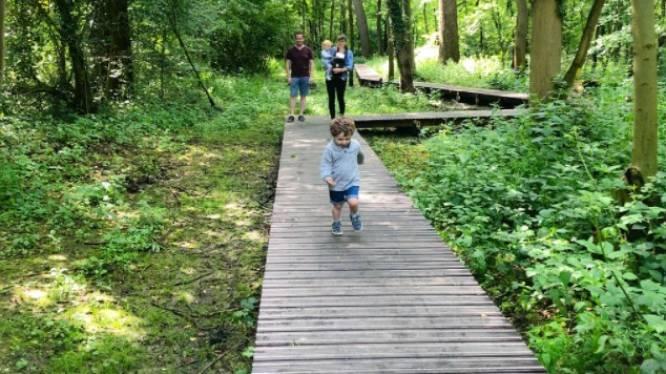 Edegemse Terlindenpad maakt kans op Antwerpse 'Wandeling van het jaar'