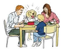 Vermenselijking van ons huisdier steeds extremer: hond krijgt kleertjes aan en de kat is vegetarisch