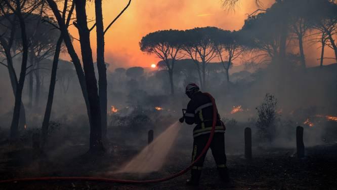 Bosbrand Saint-Tropez eist twee dodelijke slachtoffers